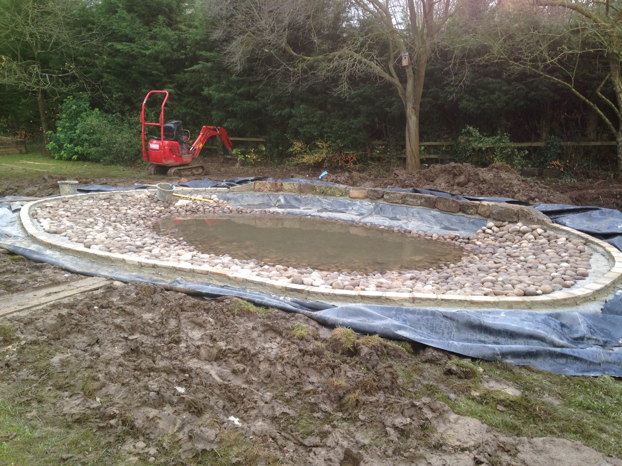 Construction of a wildlife pond
